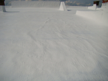 roof coating service avon ohio